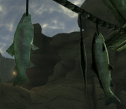 FoNV Dried Fish
