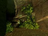 Fallen Rock Höhle