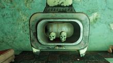 FO76 Grafton skulls