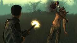 Fallout-3-point-lookout-pc-006.jpg