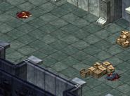 FOT Dead Vault 0 citizens