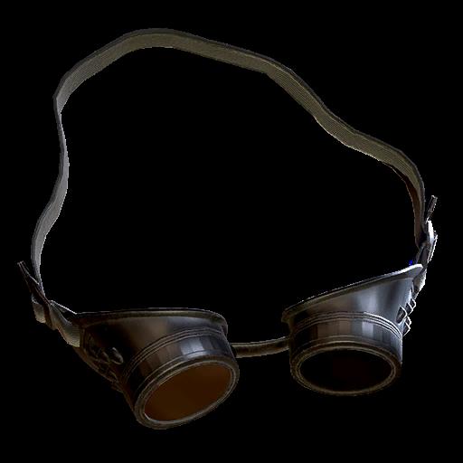 Scientist's goggles