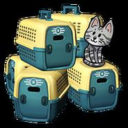FoS Pet carrier x5