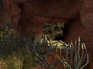 FNVHH Cueva bed
