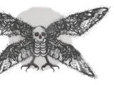 Cult of the Mothman