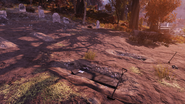 FO76 I remember you, Mom