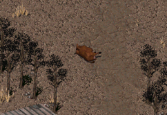 FO2 Modoc-Bess injured.png