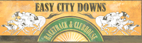 FO4 Easy City Downs render 1