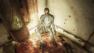 Enclave Corpse in one of the containment cells A
