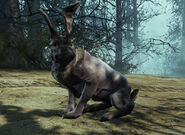 FO4FH-RadRabbit-Side