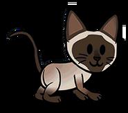 FOS Cat7