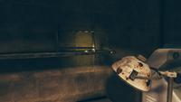 FO76 Ella Ames' bunker (Niraj's confession)