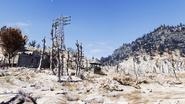 FO76 Landscape Toxic Valley