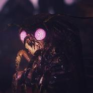 FO76 character moth wisemothman