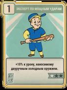 FO76 Expert Slugger card