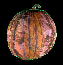 FO4 Melon Warwick.png