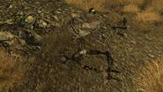 FNV Toxic dump site north