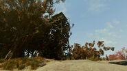 FO76 East Ridge lookout (10)