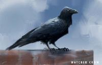 FO4 Watcher Crow