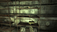 Fo3 FWS missiles