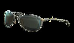 Patrolman sunglasses.png