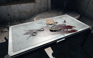 FO4 BADTFL Regional Office severed hand
