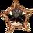 Badge-6825-1