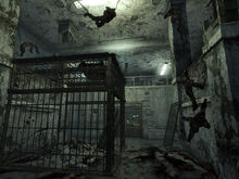 SS torture cage