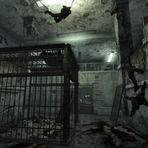 SS torture cage.jpg