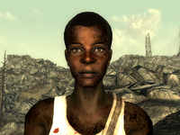 FO3Wasteland doctor10