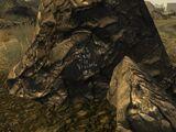 Выдолбленный камень (Fallout: New Vegas)