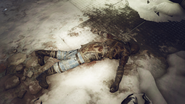 Hellcat Mercenary Corpse 2