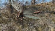 Stingwings