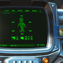 CC Pip-Boy paint job chrome promo.jpg