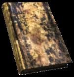FNV BurnedBook04.png