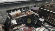 FO76 Mountainside Bed & Breakfast (Overseer's log)