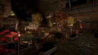 F76 Vault 51 Garden