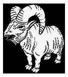 FNVDM Nvdlc01items bighorner calf.png