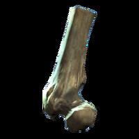 Broken femur.png