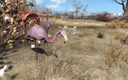FO4NW Exterior 19