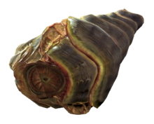 Stingwing meat.png