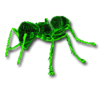Giant ant F2.png