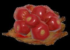 FO76 firecracker berry.png
