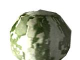 Wildkürbis-Samen