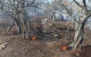 FO4 UFO crash site