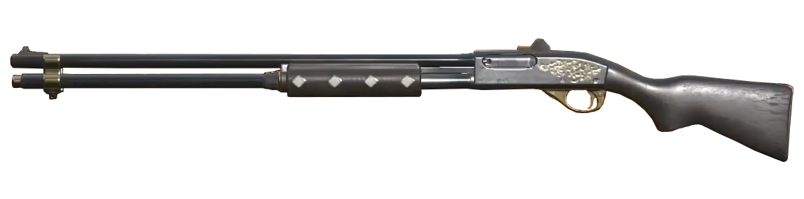 Fancy pump action shotgun