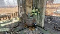 FO76 Mac's farm (2)