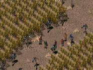FO2 Ghost Farm under attack