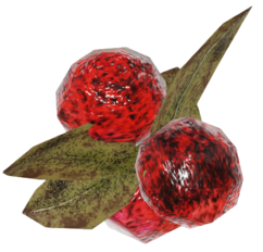 FO76 Cranberries.png