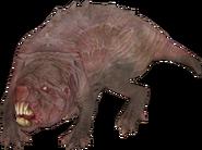 FO76 creature molerat 01